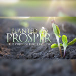Planted-to-Prosper-RootlessnessSQR