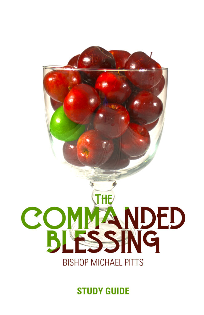 Commanded Blessing Cover